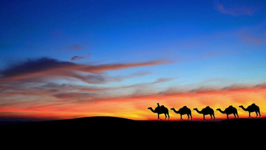 A silhouette of camels across the desert. Inspiration for us to write about blending in anywhere.