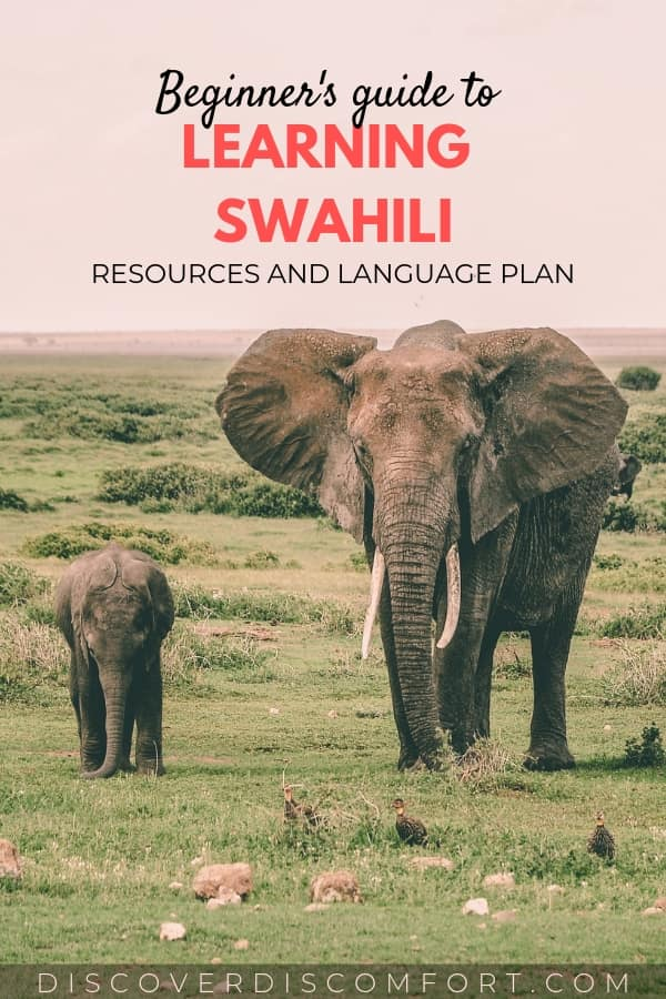 Language resource and plan for learning Swahili. Swahili is spoken by around 100 million speakers. It is the national language for Tanzania, Kenya, Uganda and the lingua franca for much of East Africa. Learning a bit of this beautiful language before traveling to this region is a great way to take your experience to the next level and truly experience the region's culture.