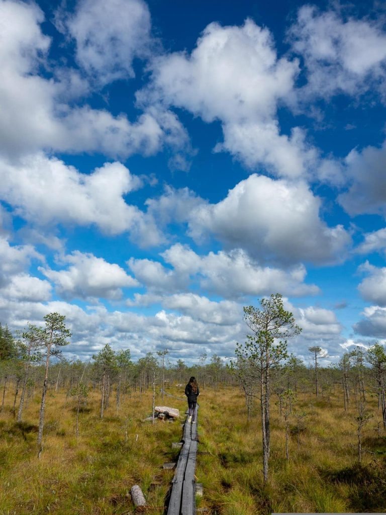 Hiking in a bog is just one of the amazing things you can do while living in Estonia.