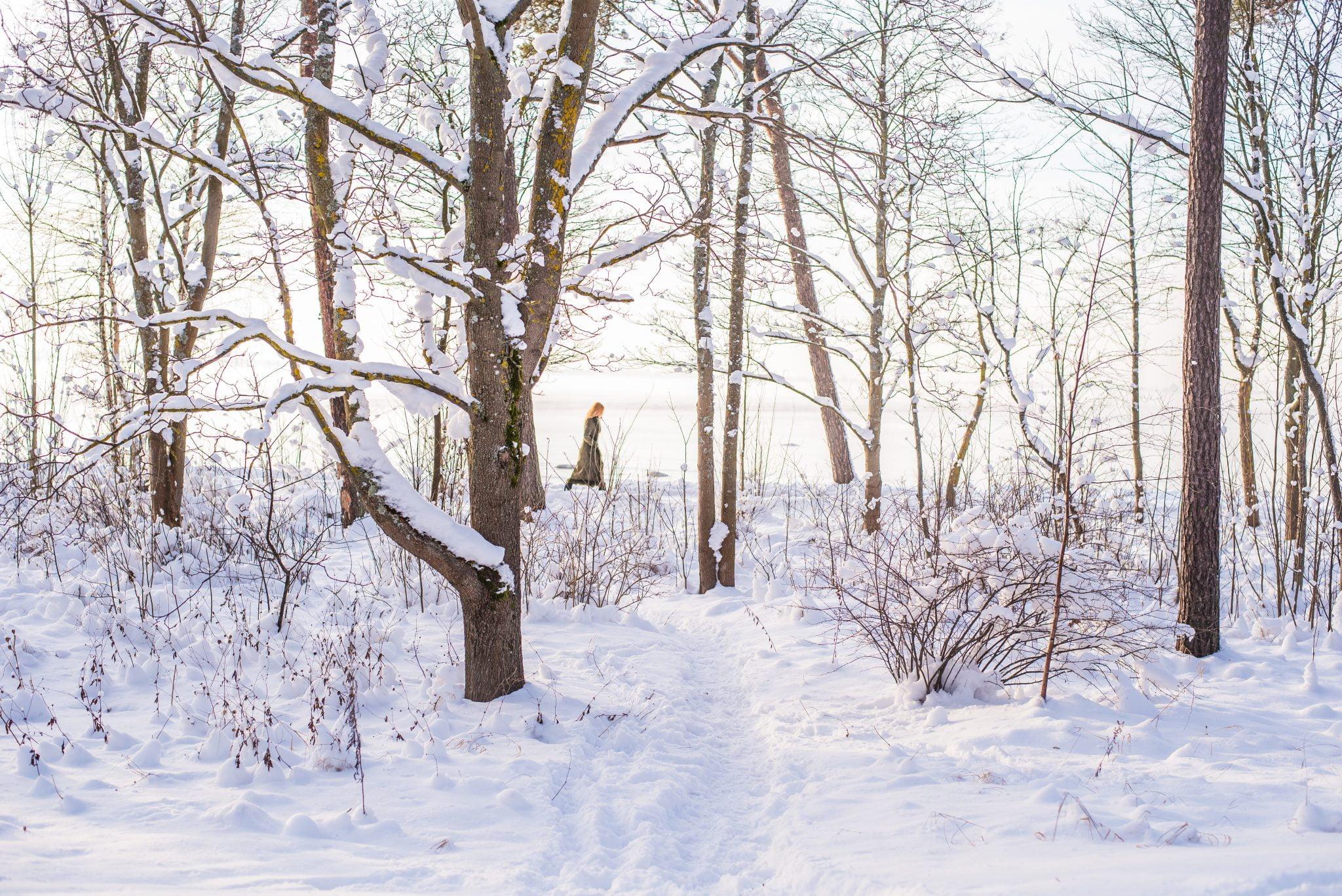Living in Estonia - winter
