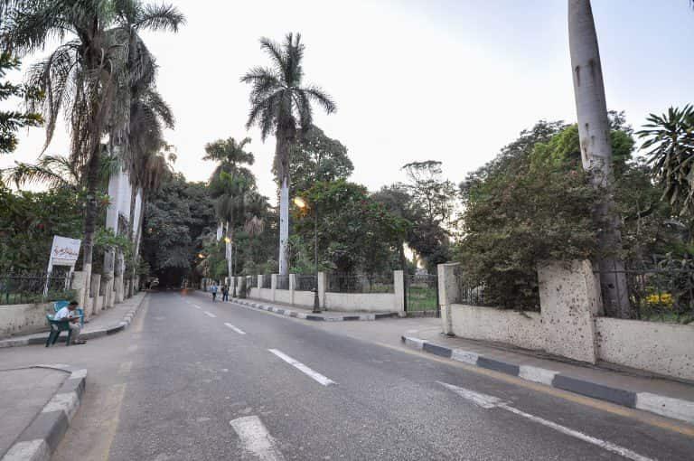 Best Neighbourhoods in Cairo - Zamalek street