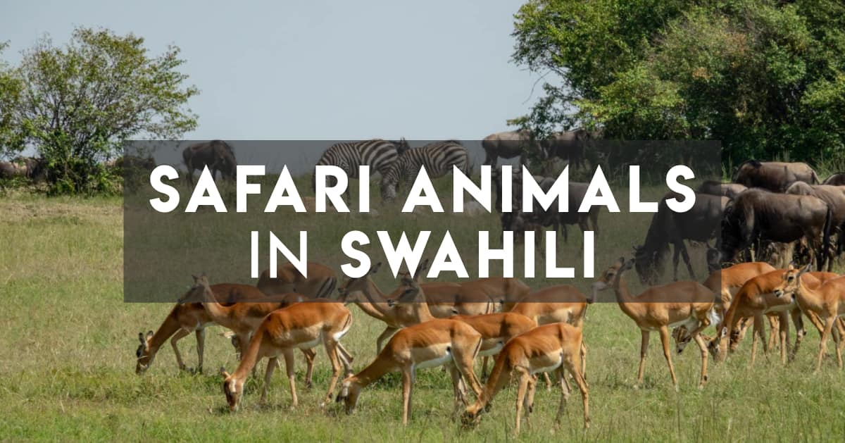 Safari Animals in Swahili