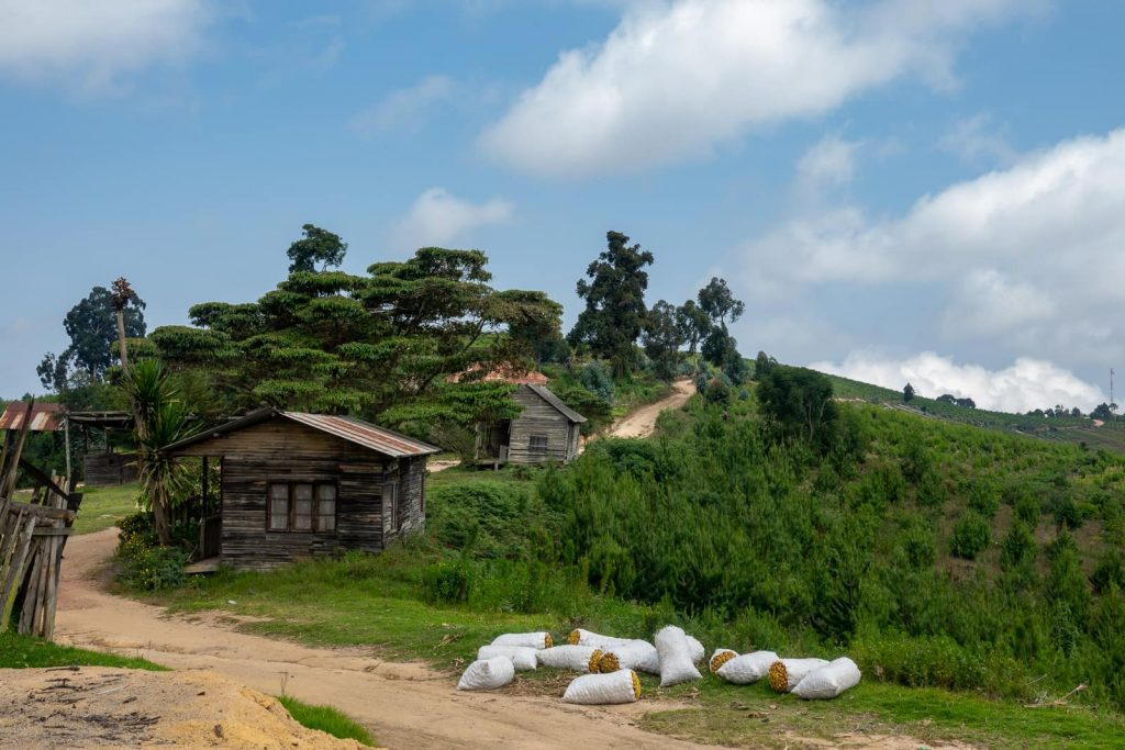 Hiking the Usambara Mountains in Tanzania - Village and farmer life in Usambara
