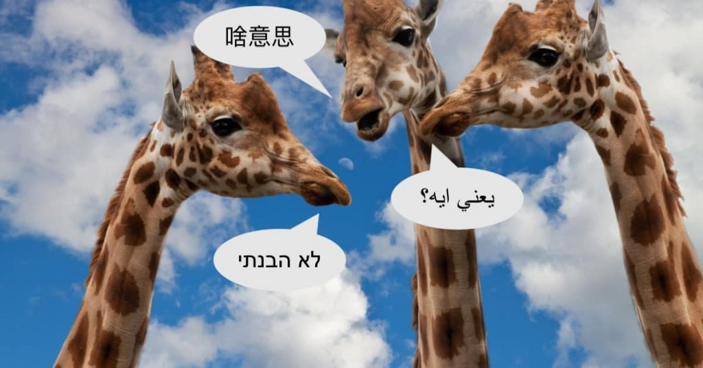 Language Learning Conversation Topics that Aren't Boring - Giraffes having a conversation