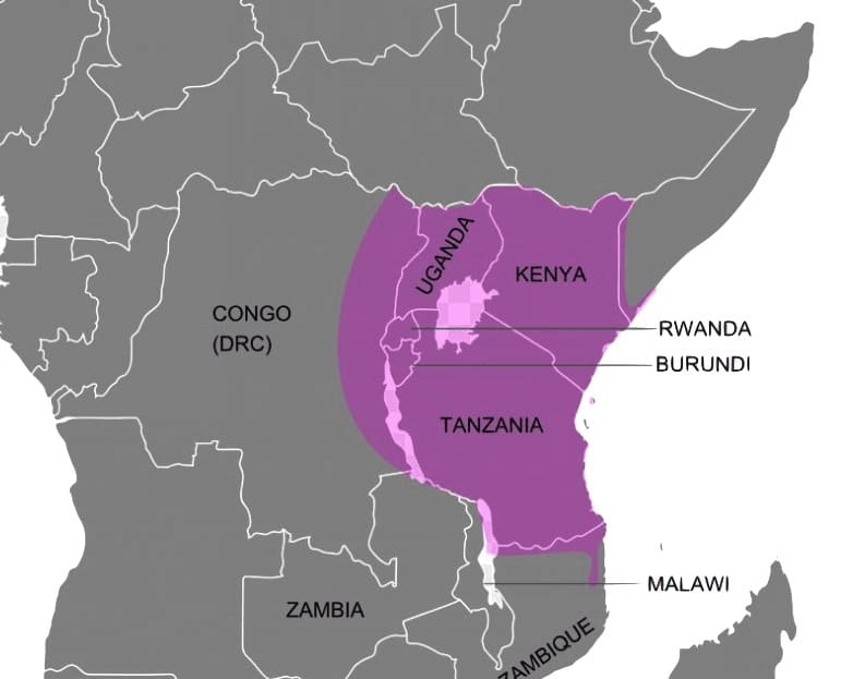 Where Swahili is spoken in africa - mostly kenya, and tanzania