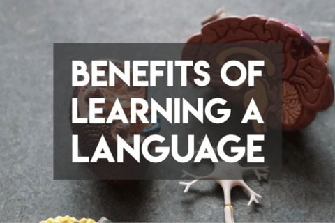 Benefits of learning a language cover photo