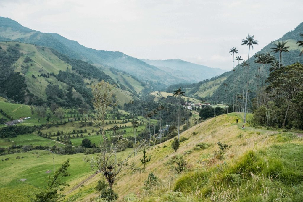 Green mountain view from Cocora Valley Salento