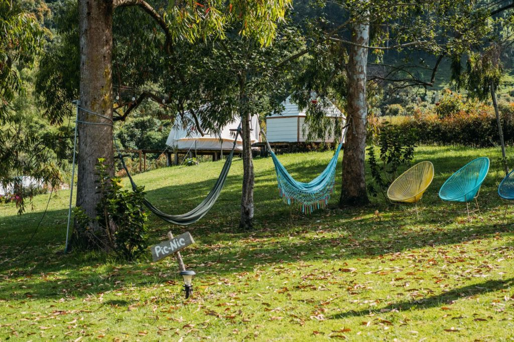 The Ultimate Valle de Cocora Hiking Guide 22