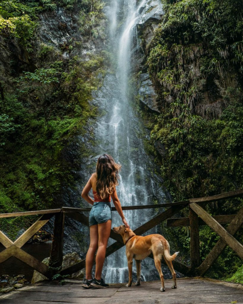The Ultimate Valle de Cocora Hiking Guide 24