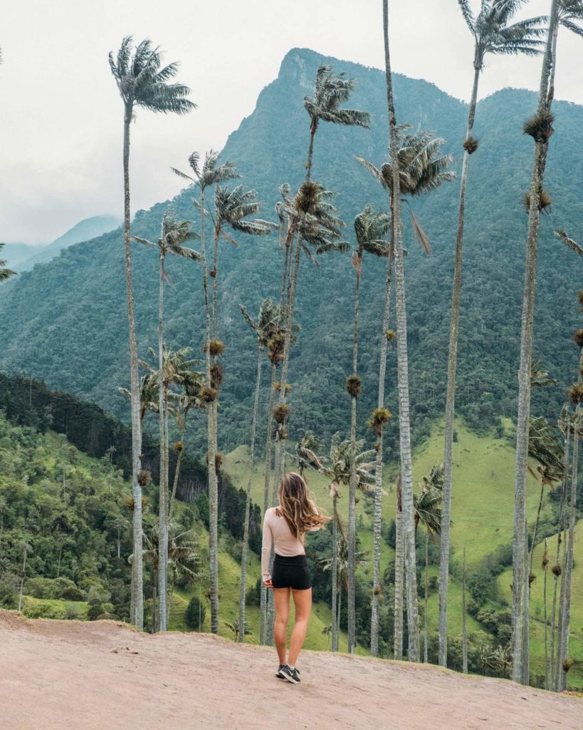 The Ultimate Valle de Cocora Hiking Guide 5