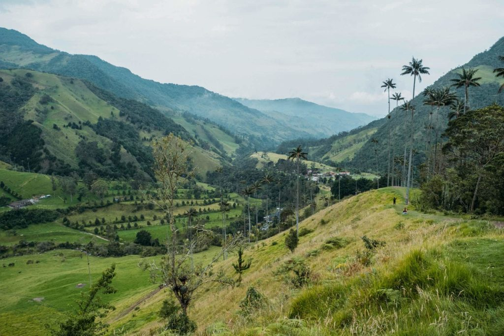 The Ultimate Valle de Cocora Hiking Guide 3