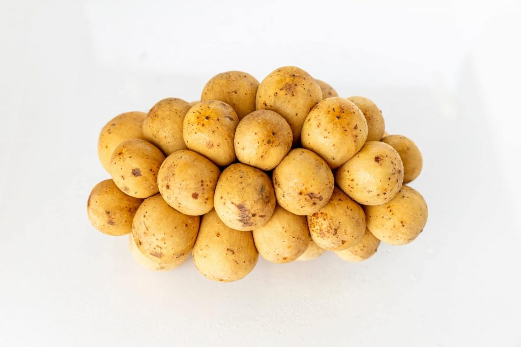 Potato, or earth apple in French, Hebrew, Persian, German dialects, and Dutch