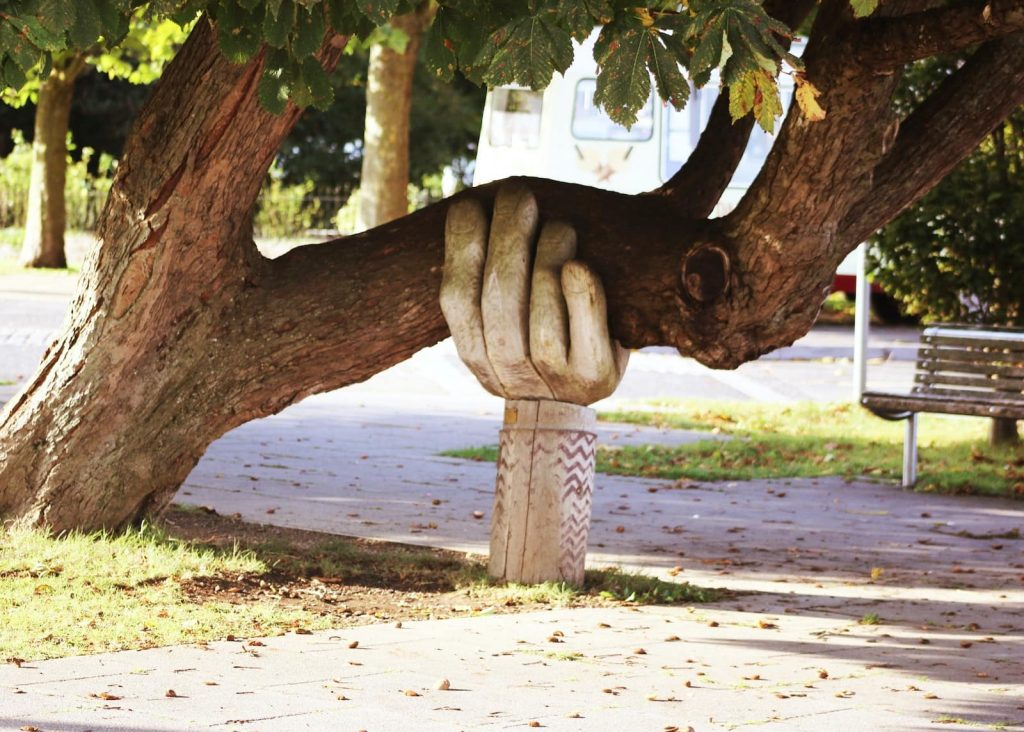 """A hand supporting a tree, for the article """"you're welcome"""" in French."""