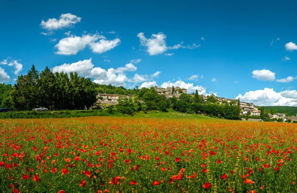 Beautiful french words cover image - france red flowers in field with castles