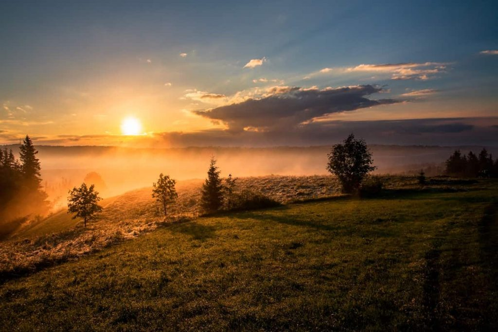 18 Ways To Say Good Morning in German 1